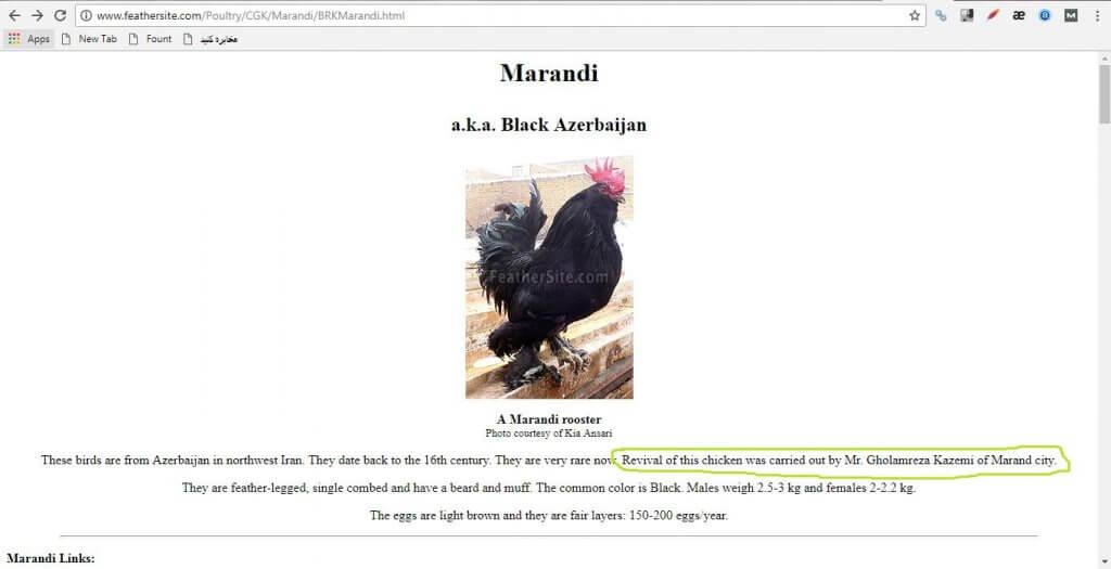 احیای مرغ مرندی توسط مهندس غلامرضا کاظمی و ثبت نام ایشان در سایت دایره المعارف طیور جهان به عنوان احیاگر این نژاد
