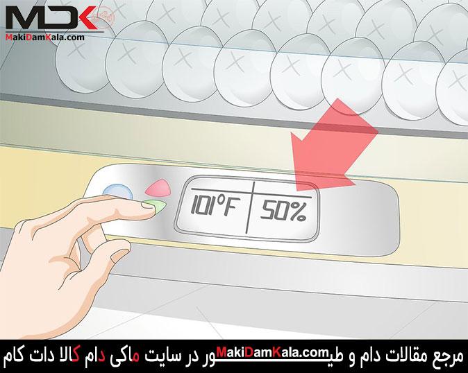 میزان رطوبت دستگاه جوجه کشی را تنظیم کنید