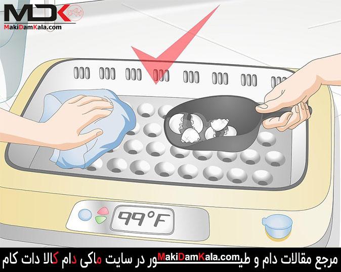 پوسته های تخم مرغ را از داخل دستگاه جوجه کشی خارج کنید