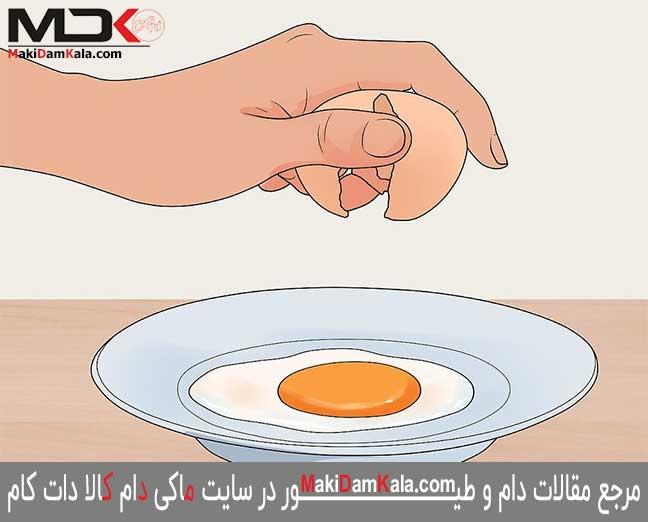 تهیّه ی تخم های نطفه دار